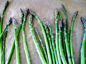 darker asparagus